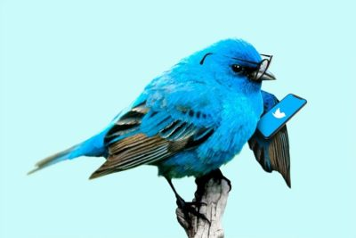 Funniest Brands on Twitter